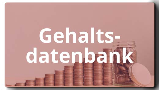 Die Gehaltsdatenbank von e-fellows.net [Quelle: e-fellows.net]